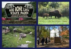 Big Bone Lick State Park: Union, KY #kentucky #statepark