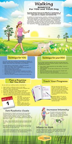 Walking Benefits for You and Your Dog – Infographic  Exercise doesn't have to be difficult or complicated.  A daily brisk walk can help you ...