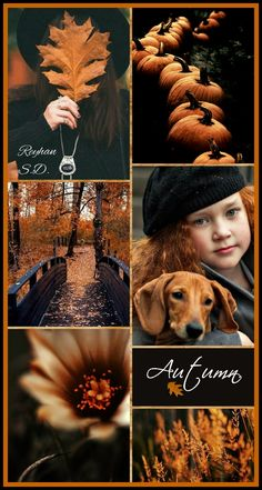 '' Autumn Black with Cinnamon '' by Reyhan S. Beautiful Collage, Beautiful Images, Color Inspiration, Inspiration Boards, Mood Colors, Color Collage, Images And Words, Red Moon, Color Harmony