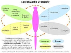 Social media dragonfly