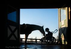 Windrush StableTherapeutic Riding Centre