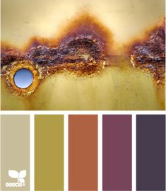 Potential color palette for Kitchen - accent wall is similar to the rusty orange color here