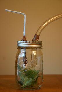 outdoor bug catcher mason jar kids craft for boys and girls