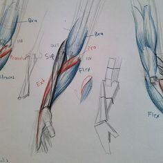 SHLDRR SQWD Arm Anatomy, Old Head, Army, Construction, Instagram, Drawings, Draw, Gi Joe, Building