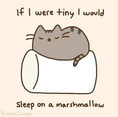 Pusheen the Cat. If I were tiny I would sleep on a marschmallow