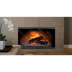 The Norwegian Zero Clearance Fireplace Door offers a panoramic display of the fire thanks to its generous glass to frame ratio! Prefab Fireplace, Modern Fireplace, Fireplace Design, Fireplace Feature Wall, Fireplace Glass Doors, Zero Clearance Fireplace, Door Texture, Decorating Your Home, Display