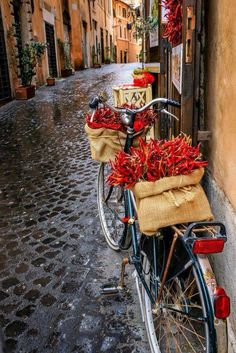 Hot peppers, Sicily