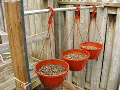 Hanging basket garden rod