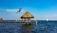 Travel Tips - Top Ten things to do in Caye Caulker, Belize. Ten cheap (or free) things to do in this slice of paradise in Belize.