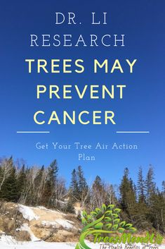 Walking in the Forest May Stop Cancer - TreesMendUs