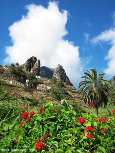 Tenerife and La Gomera islands are separated from each other by only 30 kilometers and connected by regular ferry service.
