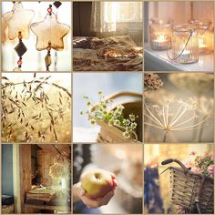 Light of Sunshine Collage Beautiful Collage, Beautiful Pictures, Mood Colors, Colours, Collages, Pot Pourri, Color Collage, Mellow Yellow, Color Pallets