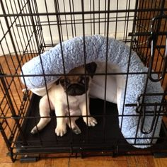 """""""This bed doesn't work right."""""""