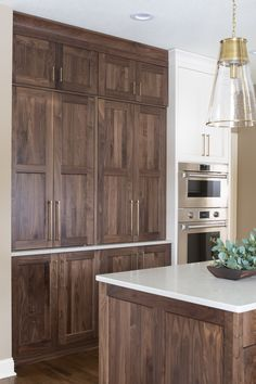 We're wrapping up 2019 with another kitchen remodel reveal, this time a walnut kitchen! Claire worked with her clients to transform their kitchen with a new design and higher quality cabinetry. Kitchen Dinning, Home Decor Kitchen, Interior Design Kitchen, New Kitchen, Home Kitchens, Updated Kitchen, Kitchen Tools, Kitchen Gadgets, Kitchen Ideas