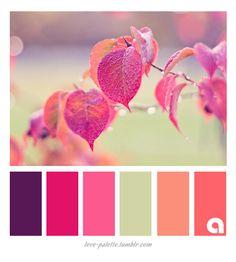Paletas de colores y tonalidades                                                                                                                                                     Más