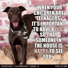 True Story!!! #love #dogs