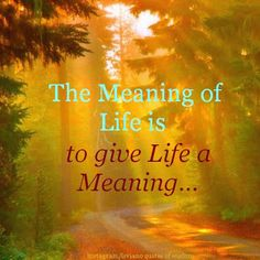 """""""The Meaning of Life is to give Life a Meaning..."""""""