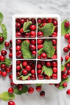 Cranberry Mint Ice Cubes