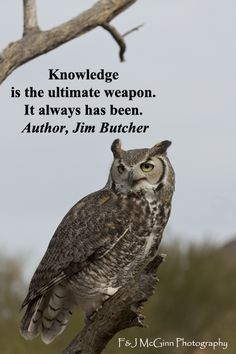 Enjoy evocative inspirational quotations about family, life, and learning at http://www.examiner.com/article/fifty-quotations-inspire-education-and-learning