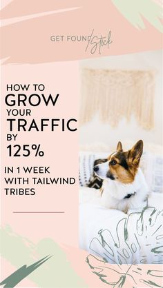 Grow your traffic