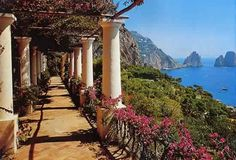 To be under an arbor in Capri.