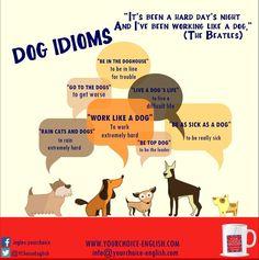 Dog Idioms