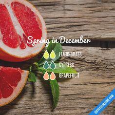 Spring in December — Essential Oil Diffuser Blend