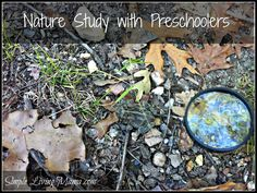 Get out and explore nature with your preschoolers! Charlotte Mason advocated lots of time outdoors for young children. Preschoolers love to explore outside. Here is how to get them outside and noticing all of nature!