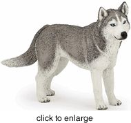 Papo - Siberian Husky - click to enlarge 1