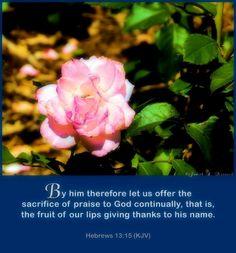 Hebrews 12:15 KJV