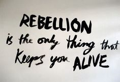 rebellion, quote, and alive image