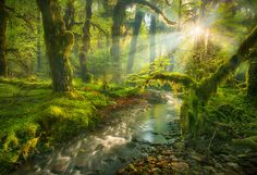 500px ISO » Unbelievable Photography » A Day In The Life Of Landscape Photographer Marc Adamus