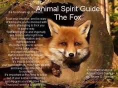 We've gathered our favorite ideas for Fox Spirit Quotes Quotesgram, Explore our list of popular images of Fox Spirit Quotes Quotesgram. Spirit Animal Totem, Fox Spirit, Animal Spirit Guides, Fox Totem, Animal Meanings, Animal Symbolism, Animal Medicine, Power Animal, American Spirit