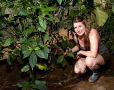 """Two-time Guelph grad Adrienne Brewster's job is the """"bee's knees. Bees Knees, Mexico Travel, Conservatory, Biology, Cambridge, Environment, To Go, Faces, Butterfly"""