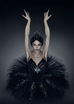 Black Swan Magic ...