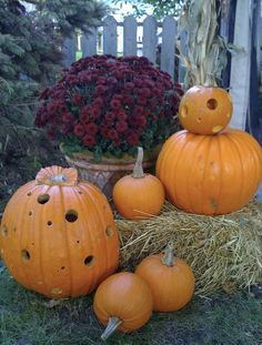 50-Awesome-Halloween-Indoors-and-Outdoor-Decorating-Ideas-_069.jpg 570×752 pixels