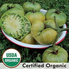 Heirloom Tomato Seeds - Organic & Non-GMO Tomato | Seed Savers Exchange