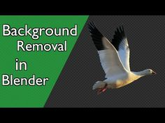 Tutorial: Background Removal in Blender - BlenderNation