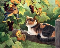 Grapevine Secrets  Persis Clayton Weirs