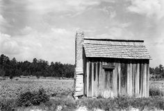 Walker Evans: photographer, A cabin and cotton fields in Hale County, Ala. (1936) Library of Congress
