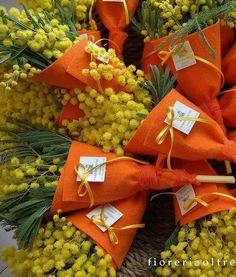 Fioreria Oltre/ Mimosa