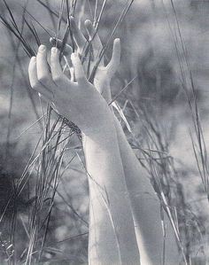 Edward Steichen - Dana's Hands and Grasses-1923