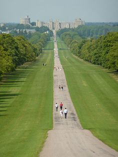 The Long Walk from Windsor Castle to the Copper Horse statue of King George III where you can enjoy amazing views of the castle.