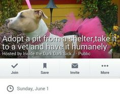 Quick links to share the petition: Boycott Pitbull euthanizing event on Facebook! | Yousign.org