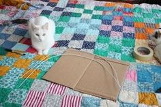 DIY Cat Tent: 9 Steps (with Pictures)