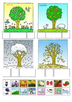 This worksheet will help your child learn the four seasons and what happens in each of them.