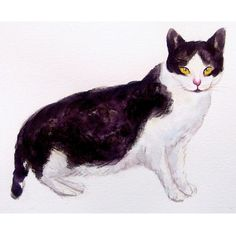 CUSTOM CAT PORTRAIT, Original watercolor painting 10x8inch on Etsy, $25.00