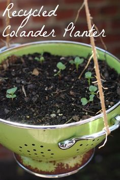 reuse an old rusted colander as a hanging planter outdoors