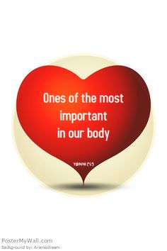 One of the most important in our body . <3