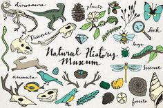 Maginify the Lord-- Boymom Check out Natural History Illustration Pack by Lemonade Pixel on Creative Market